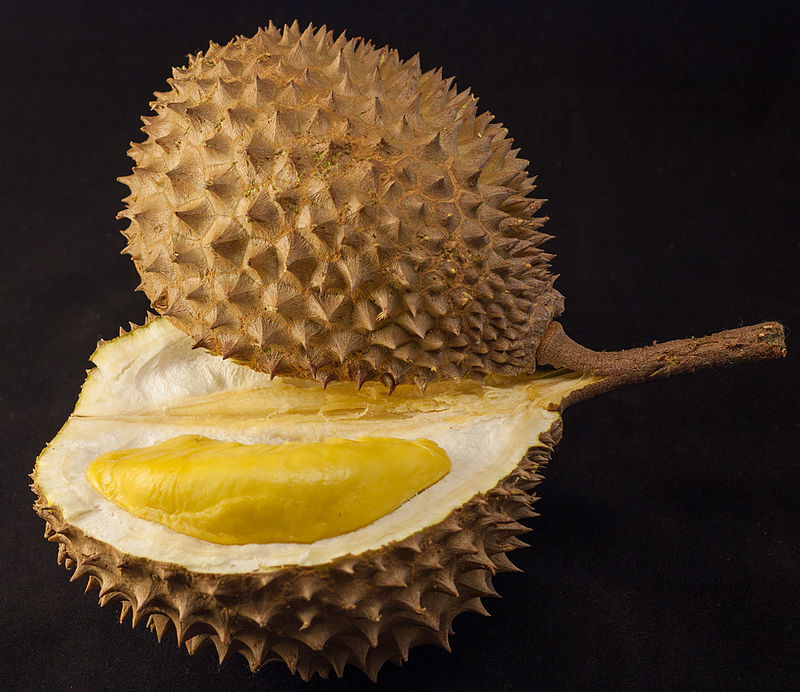 Ucokdurian.id: From An Idea To Sell One Fruit Online To Earning $170K A Month