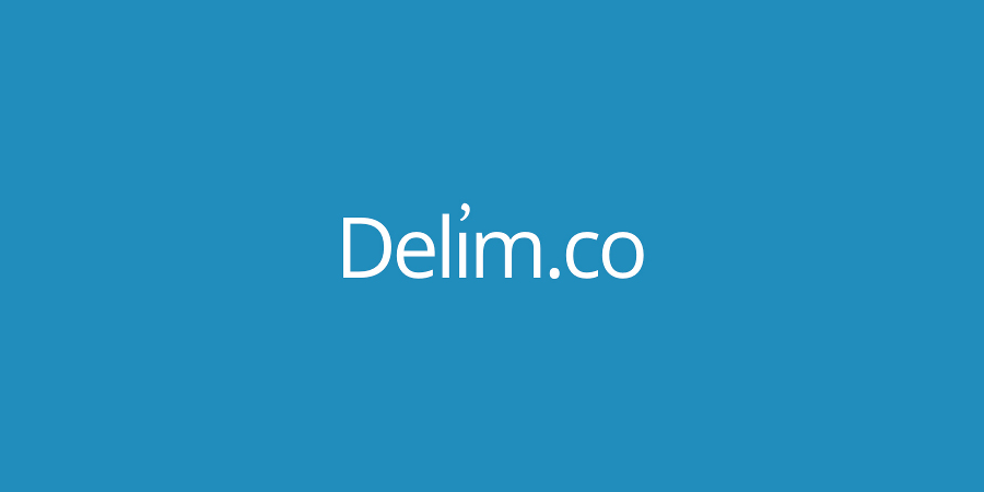 Delim.co: 150$ a month from a simple tool to manage data
