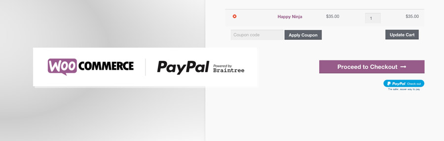 paypal by braintree