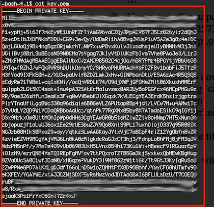 Let's Encrypt Key Copy