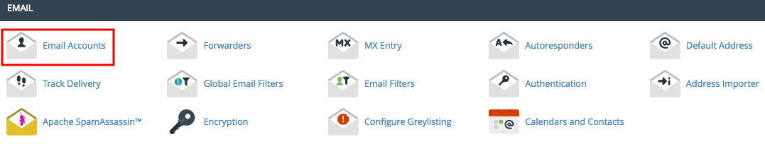 cPanel Email Accounts Section