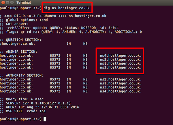 Dig NS command in terminal