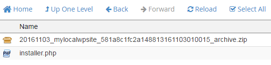 uploaded duplicator package