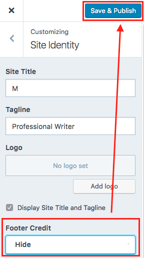 WordPress Site Identity Save and Publish