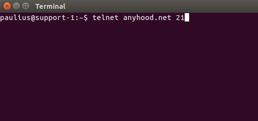 Telnet example