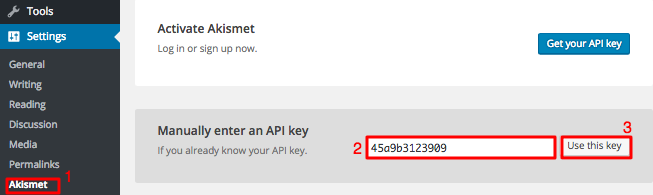 Akismet Settings Page API Key