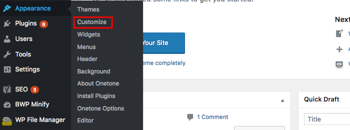 WordPress Appearance Customize