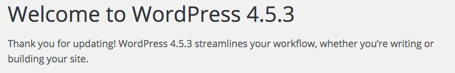 Wordpress Automatic Update Success Message