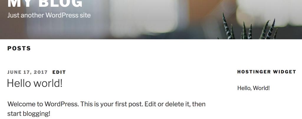 WordPress Widget Sitede Görünümü