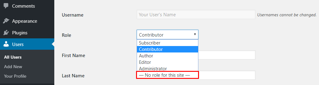 Setting a new role for your user