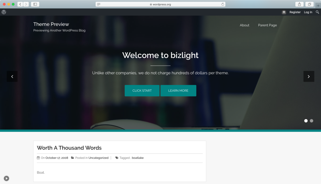 Bizlight WordPress theme.