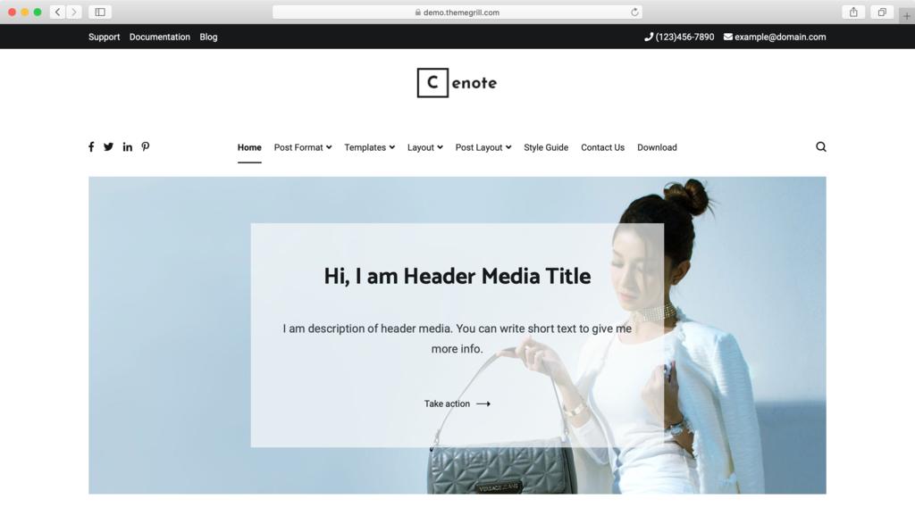 Bizlight WordPress theme.