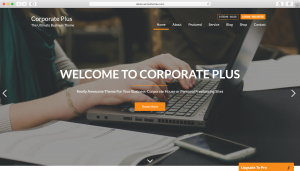 WordPress theme One Page Express
