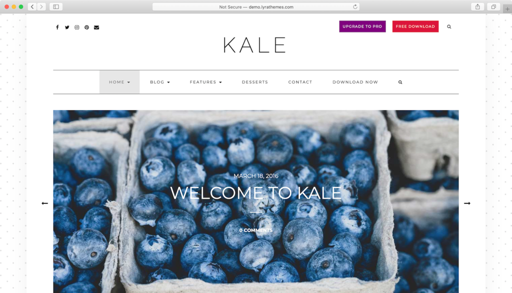 Kale WordPress theme.