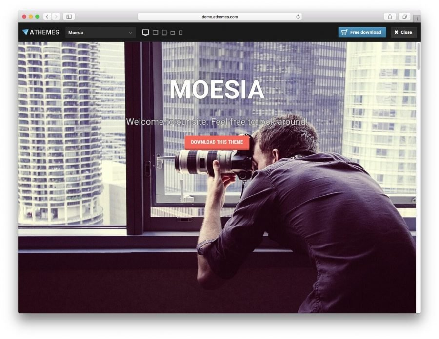 The Moesia demo page.