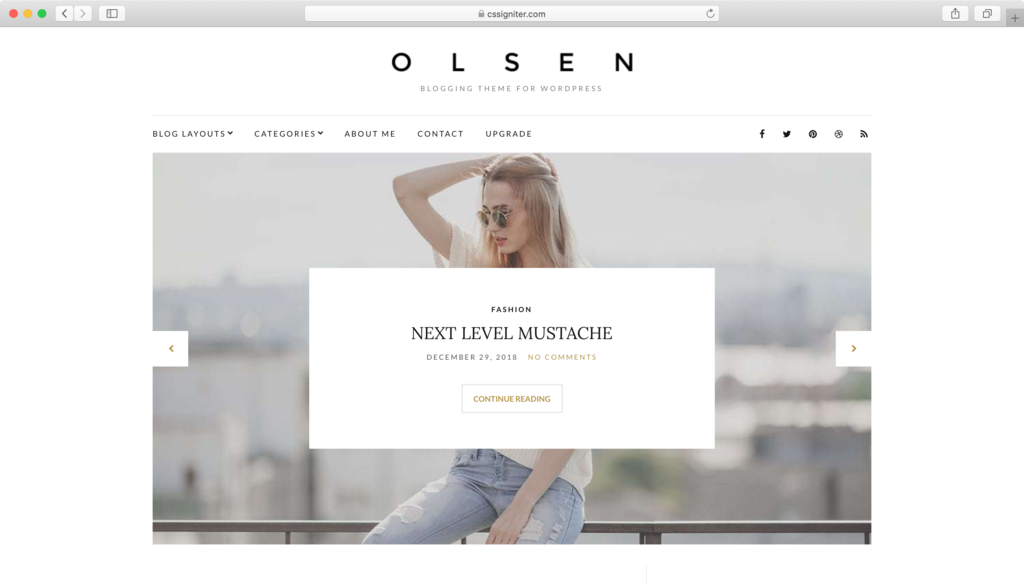 Olsen Lite WordPress theme.