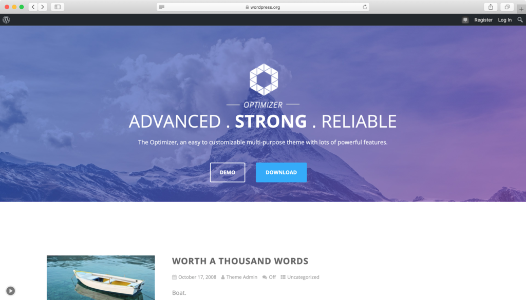 Optimizer WordPress theme.