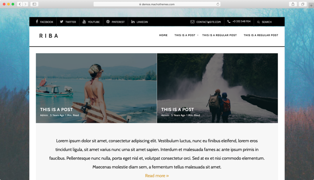 Riba Lite WordPress theme.