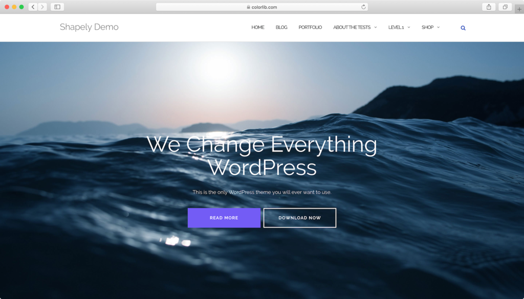 Shapely WordPress theme.