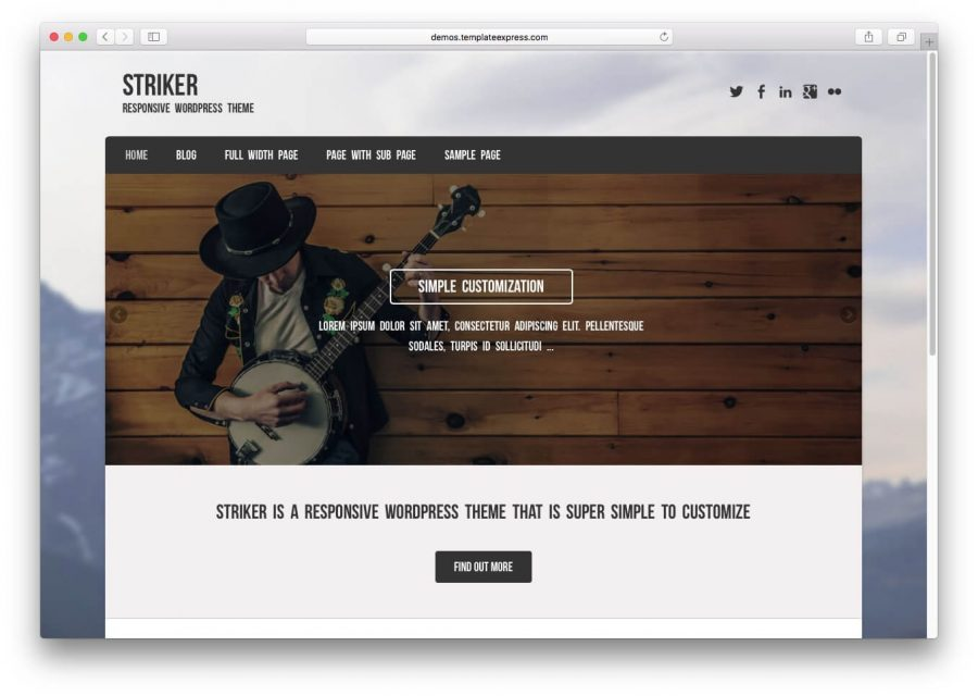 Demo Striker WordPress Tema