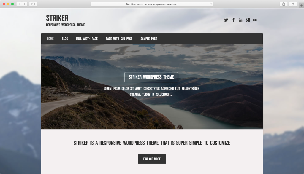 Striker WordPress theme.