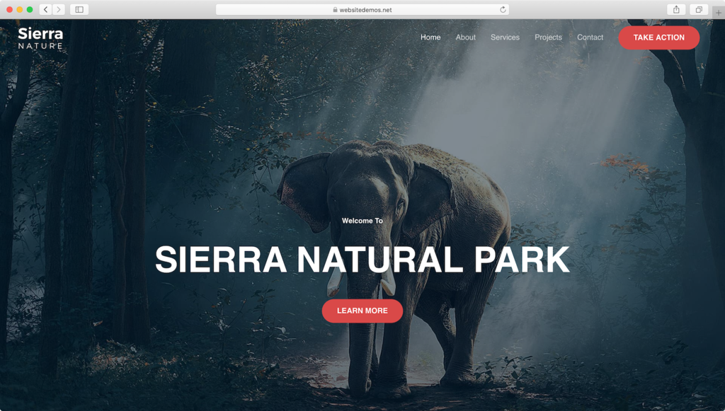 Astra WordPress theme.