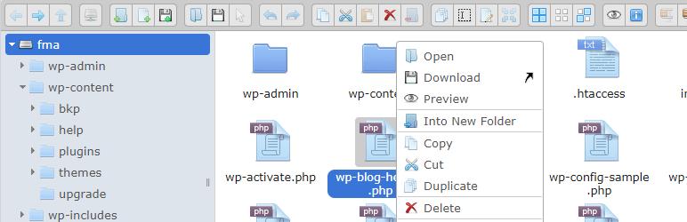Advanced File WordPress plugin