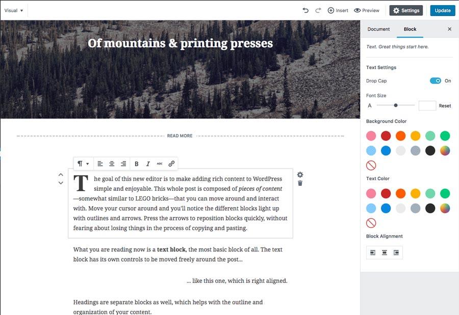 Section de bloc de Gutenberg et tout ce qu'il est optons