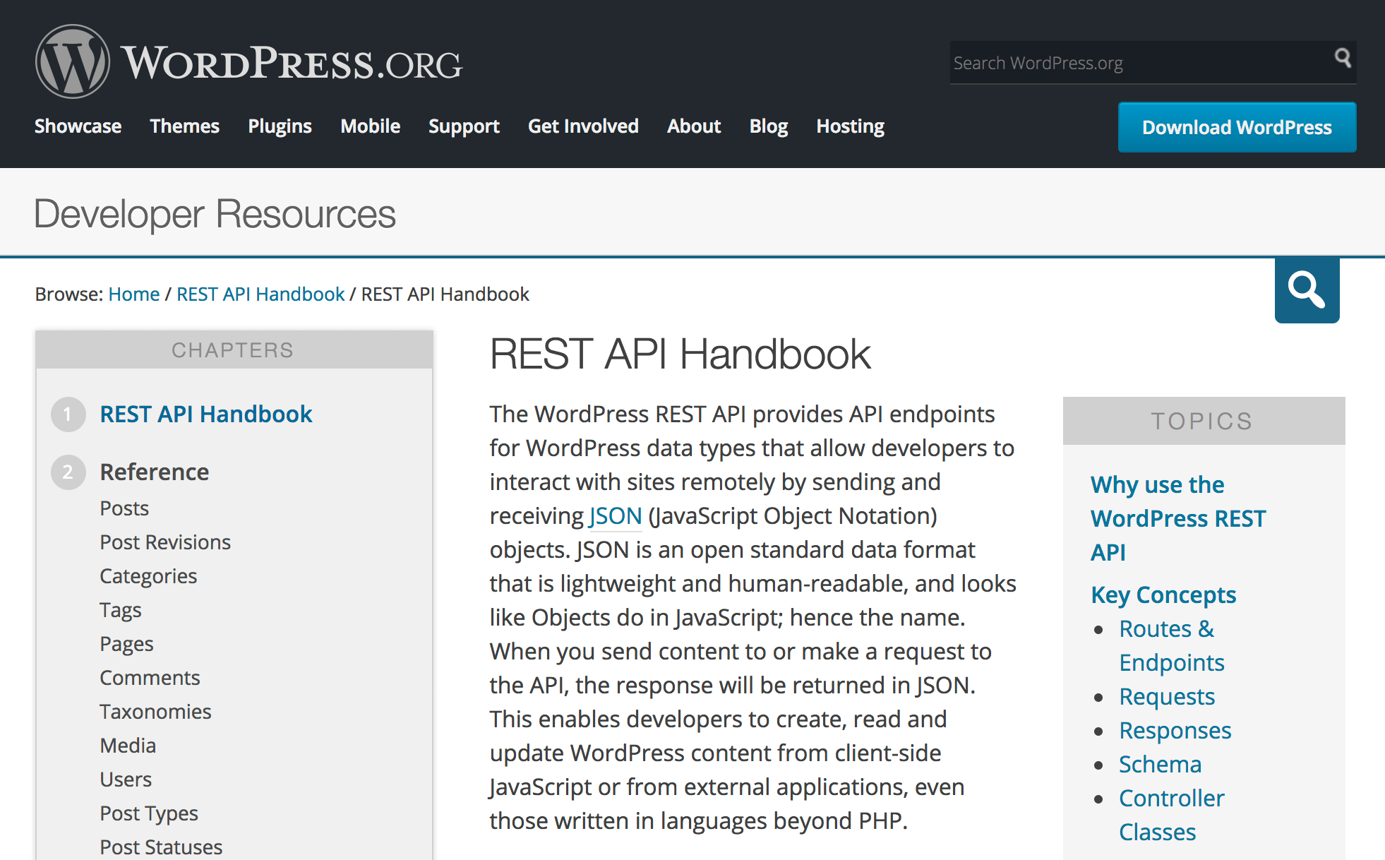 Why the WordPress REST API Matters for Developers