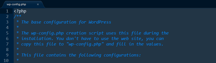 The wp-config.php file.