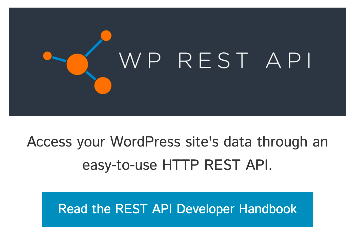 WP REST API project homepage