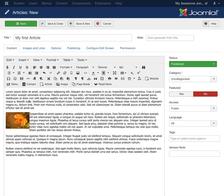 Joomla Tutorial: Articles: New section in Joomla