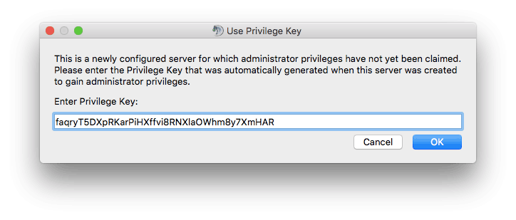 Entering privilged key for TeamSpeak 3 server