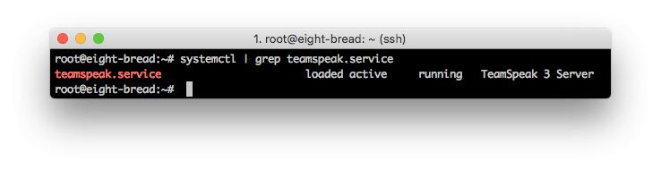 TeamSpeak 3 Server Running Successfully