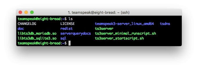 TeamSpeak 3 server contents