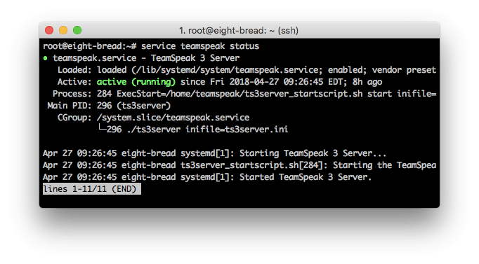 A detailed TeamSpeak3 server status