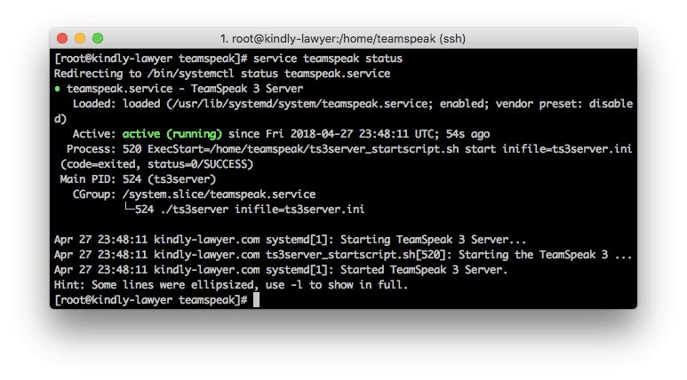 TeamSpeak 3 server status report