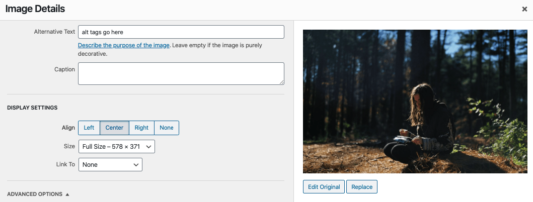 example of wordpress alt tags box to input your description of the image