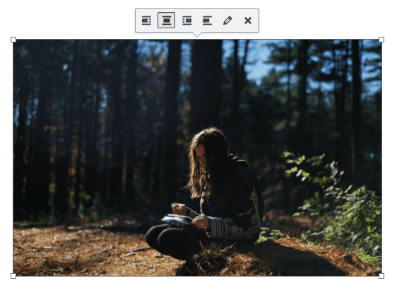 example of wordpress editing an image icon