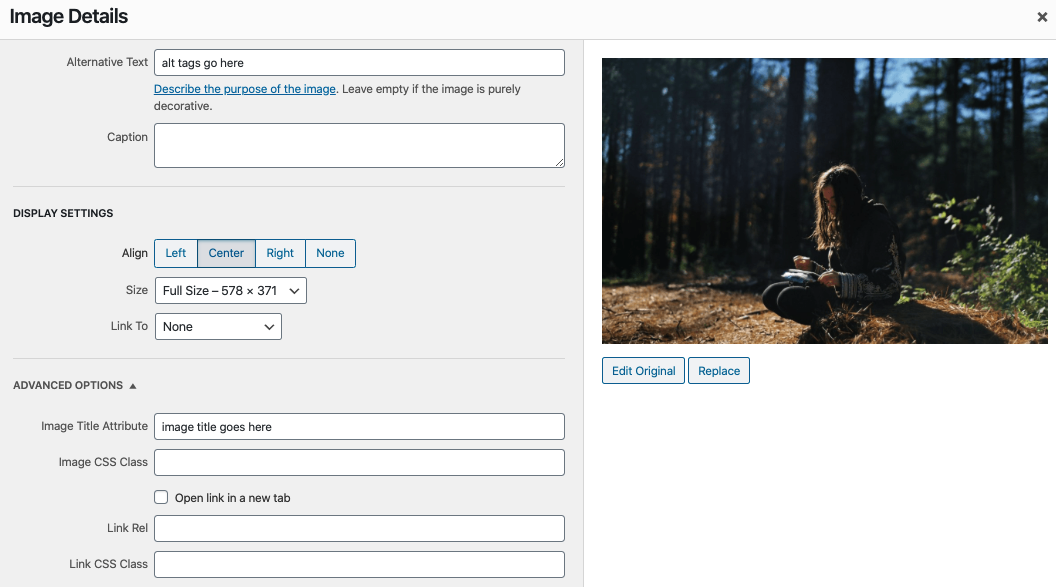 example of wordpress image editor adding a title