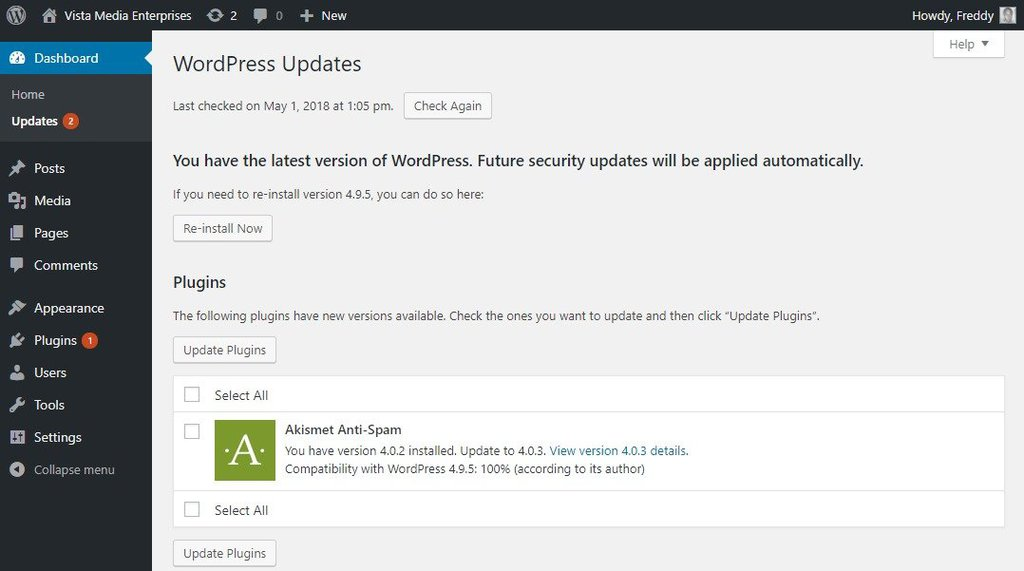 màn hình wordpress update
