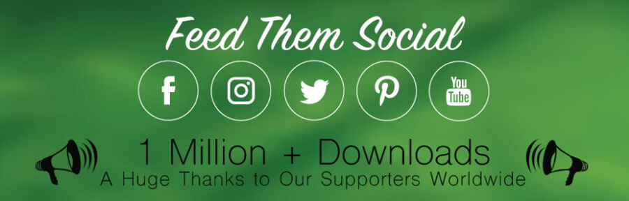 The Feed them Social WordPress Instagram plugin.
