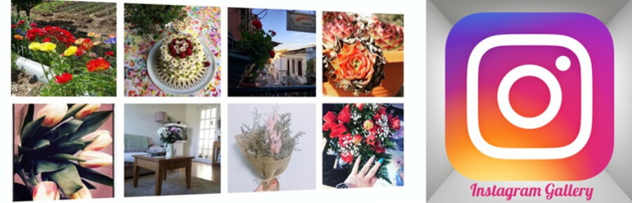 The Instagram Gallery plugin.