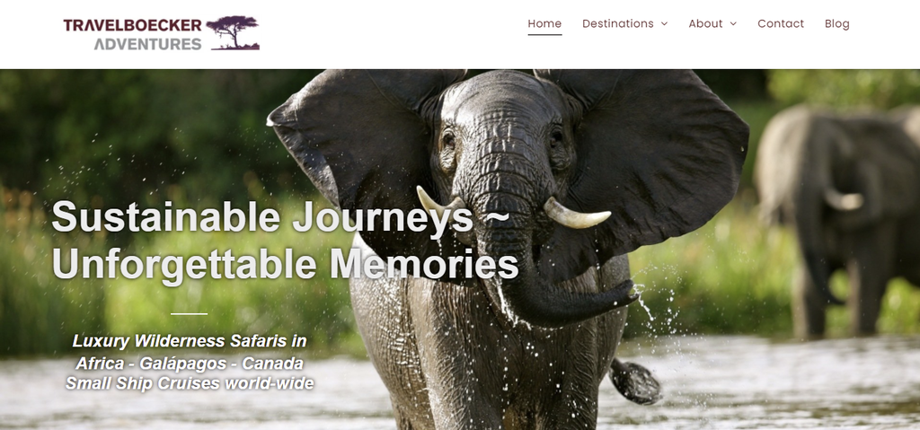 A screenshot showing Travelblocker Adventures's homepage