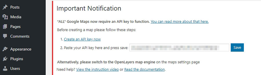 Pasting your API key into WordPress.