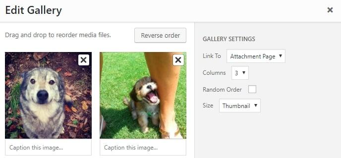 Editing your WordPress gallery.