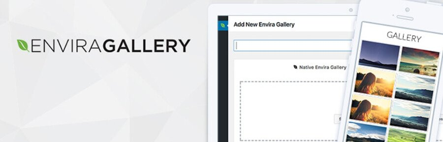 The Envira Gallery plugin.