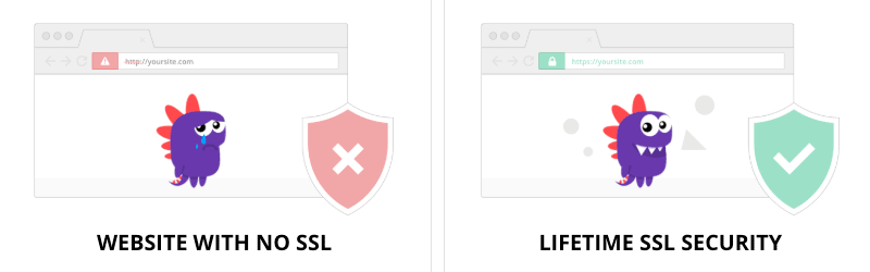 Website with and without SSL/TLS