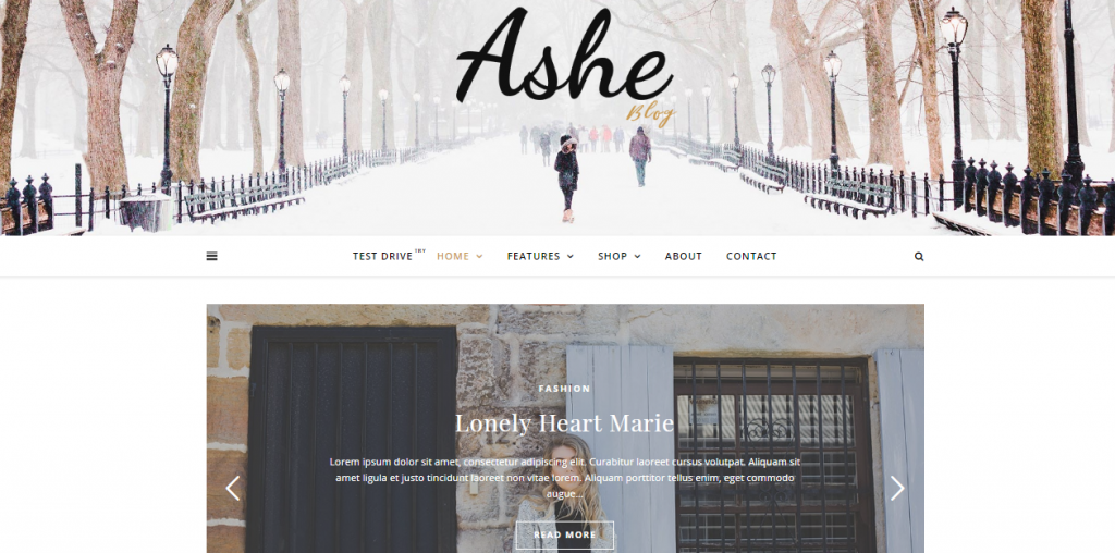 Ashe Free WordPress Blog Theme