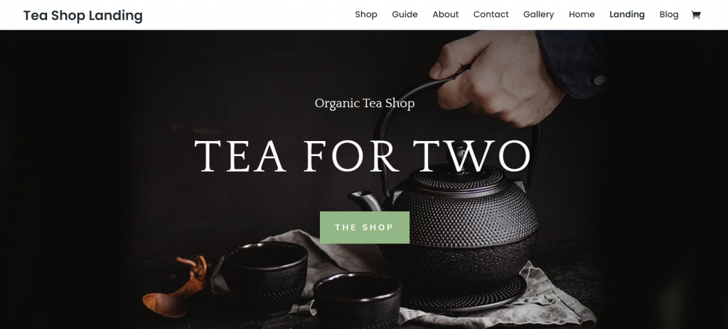 Divi WordPress eCommerce Theme